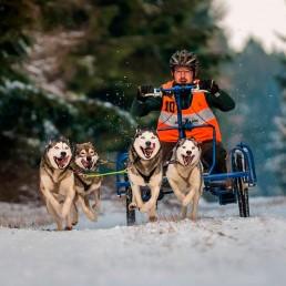 Mikkel Buuge – Sibirien Huskies
